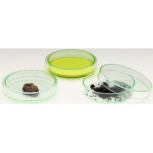 Windaus Petri dishes, 120x20mm, glass with lid